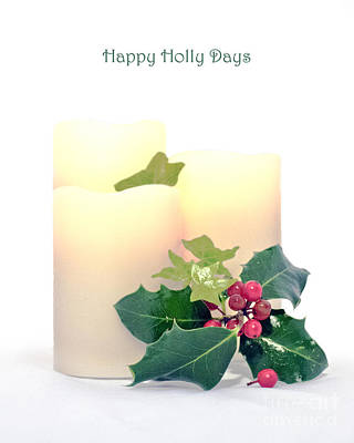 Photograph - Happy Holly Days by Terri Waters