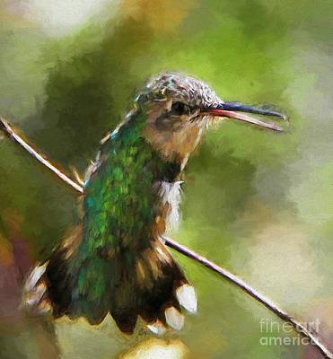Happy Hummingbird Art Print