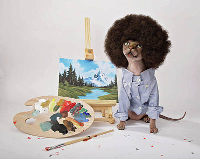 Bob Ross Photograph - Happy Meowstakes by Brooke Arnold