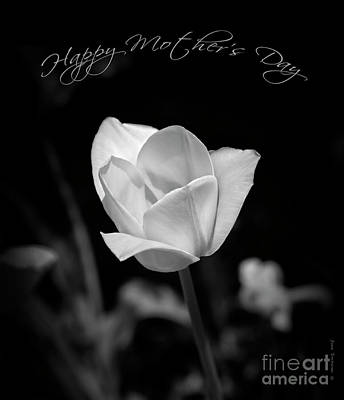 Photograph - Happy Mother's Day Floral Black And White by John Stephens