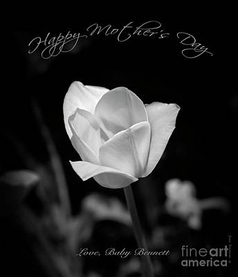 Photograph - Happy Mother's Day From Baby Bennett by John Stephens