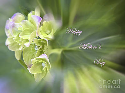 Photograph - Happy Mother's Day Greeting Card by Ella Kaye Dickey