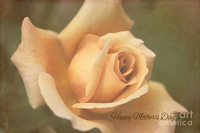 Photograph - Happy Mothers Day Lush Rose by Joy Watson