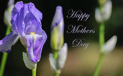 Photograph - Happy Mothers Day by Tikvah's Hope