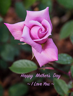 Photograph - Happy Mother's Day by Venetia Featherstone-Witty