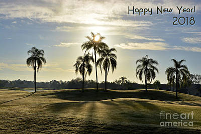 Photograph - Happy New Year by Lorenzo Cassina