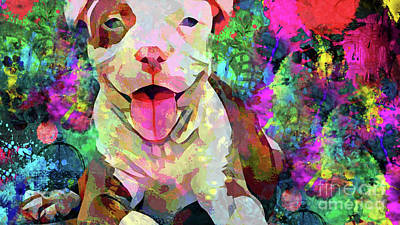 Pitbull Photograph - Happy Puppy by Jon Neidert