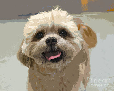 Happy Shih Tzu Art Print