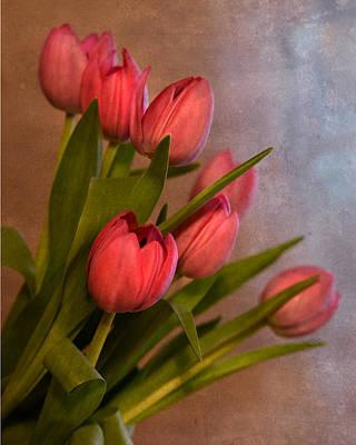 Photograph - Happy Spring by Ann Bridges