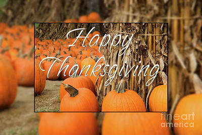 Photograph - Happy Thanksgiving by Jill Lang