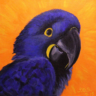 Painting - Happy The Hyacinth Macaw by Janet Greer Sammons