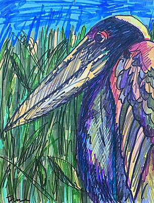 Drawing - Cody's Critters - Happy The Night Heron by George Frayne