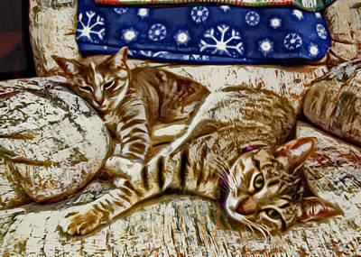 Kitten Digital Art - Happy Together by David G Paul