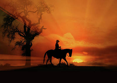 Western Pleasure Horse Photograph - Happy Trails by Stephanie Laird