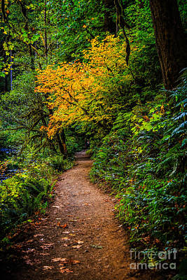 Photograph - Happy Trails To You by Jon Burch Photography
