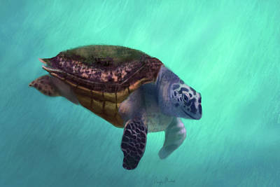 Portrait Digital Art - Happy Turtle by Angela Murdock
