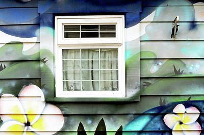 Photograph - Happy Window by Haleh Mahbod