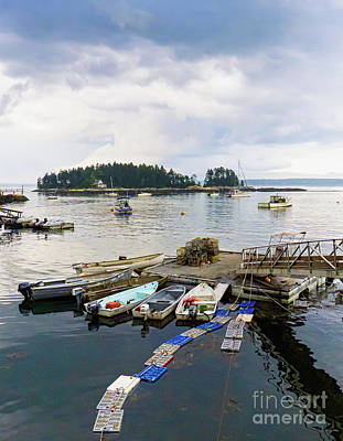 Photograph - Harbor At Georgetown Five Islands, Georgetown, Maine #60550 by John Bald