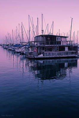 Photograph - Harbor At Santa Barbara by Tim Newton