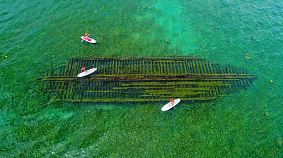 Photograph - Harbor Beach Shipwreck by Coulter Stuart