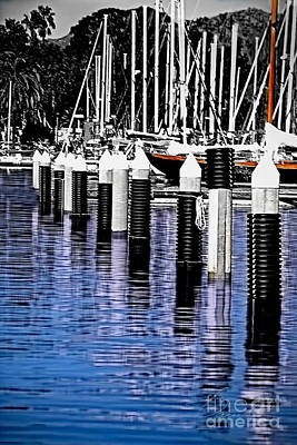 Photograph - Harbor by Danuta Bennett