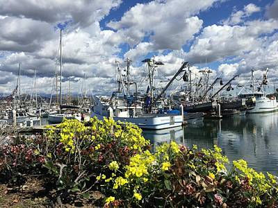 Photograph - Harbor Flowers by Miki Klocke