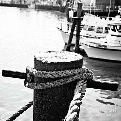 Photograph - Harbor Life by Scott Pellegrin