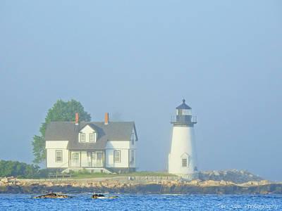 Photograph - Harbor Mist by Teri Ridlon