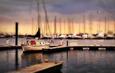 Photograph - Harbor Point Stamford by Diana Angstadt