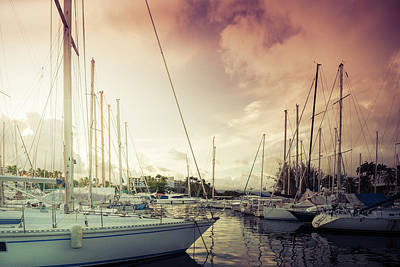 Photograph - Harbor by Radek Spanninger