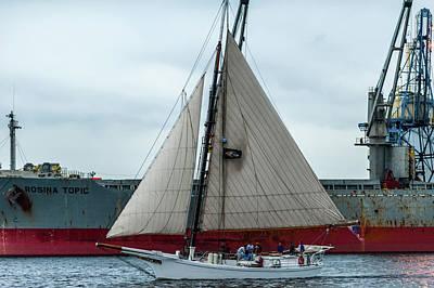 D700 Photograph - Harbor Sail by Jim Archer