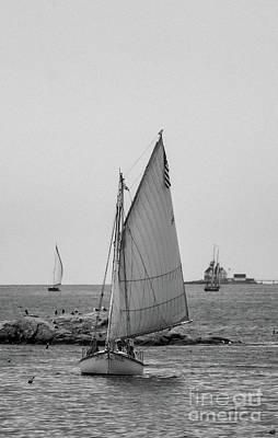 Photograph - Harbor Sailing by Debbie Parker