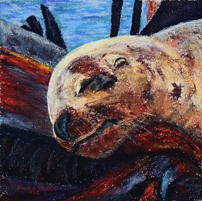Harbor Seal Original by Diana Wade