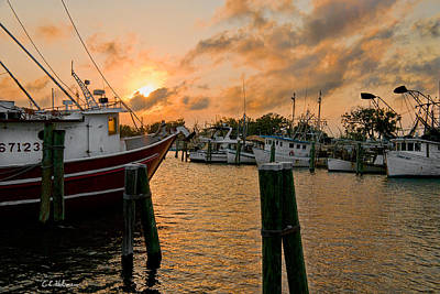 Photograph - Harbor Sunset by Christopher Holmes
