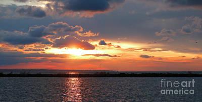 Photograph - Harbor Sunset by Debbie Parker