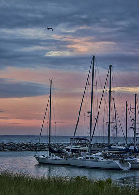 Photograph - Harbor Sunset by Ron Grafe