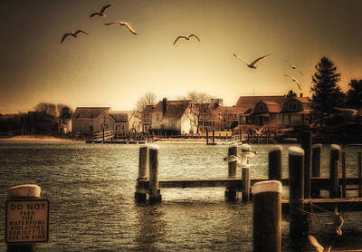 Photograph - Harbor View by Gina Cormier