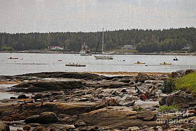 Photograph - Harbor View by Marcia Lee Jones