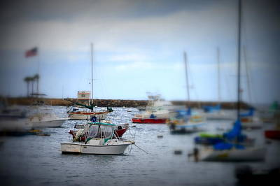 Photograph - Harbour Boats by Bill Hamilton