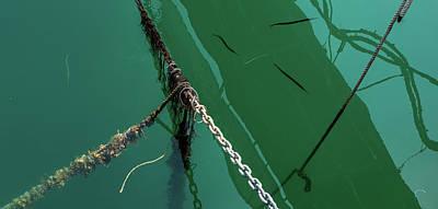 Photograph - Harbour Detail by Jocelyn Kahawai