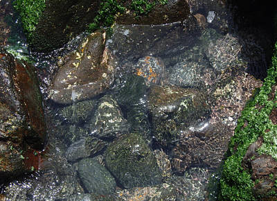 Photograph - Harbour - Liquid Pebbles by Robert Schaelike