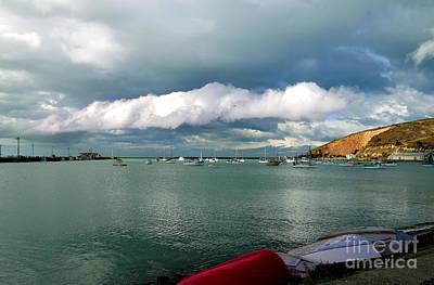 Photograph - Harbour by Nareeta Martin