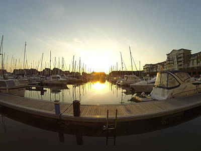 Photograph - Harbour Sunset by Will Gudgeon