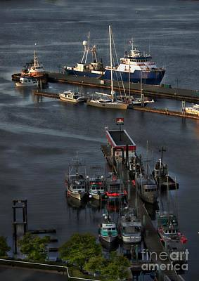 Photograph - Harbour View by Gail Bridger