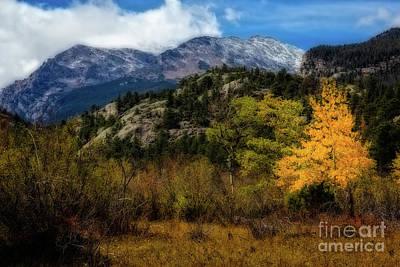 Photograph - Hard Winter Coming by Jon Burch Photography
