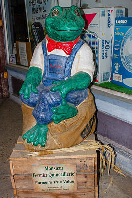 Photograph - Hardware Store Frog by Robert Hebert