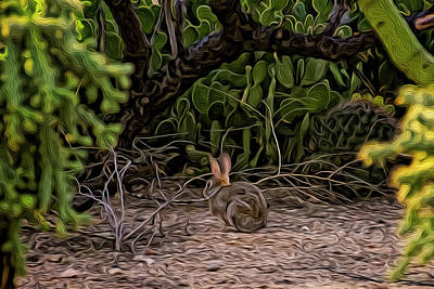 Photograph - Hare Habitat Op23 by Mark Myhaver