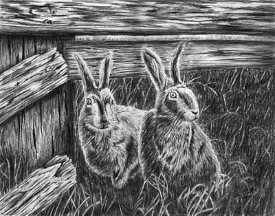 Hare Line  Art Print by Peter Piatt