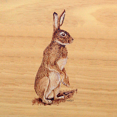 Pyrography - Hare Pillow/bag by Ron Haist