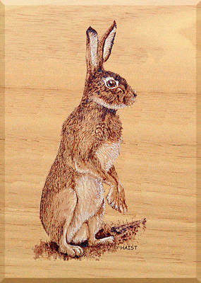 Pyrography - Hare by Ron Haist